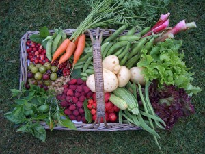 Vegetables and Fruit from the garden
